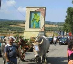 Pellegrinaggio della Madonna di Murorotto a Palermiti.jpg